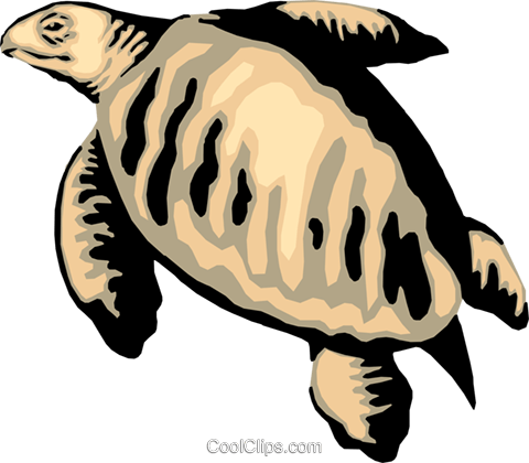 Sea Turtle Royalty Free Vector Clip Art illustration anim0068