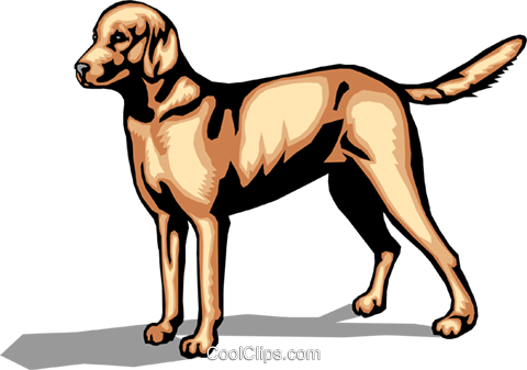 Dog Royalty Free Vector Clip Art illustration anim0070