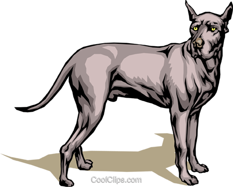 Great Dane Royalty Free Vector Clip Art illustration anim0072