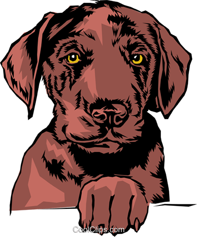 Dog Royalty Free Vector Clip Art illustration anim0073