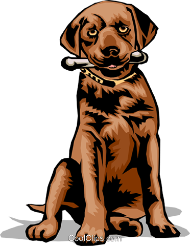 Dog with bone Royalty Free Vector Clip Art illustration anim0075