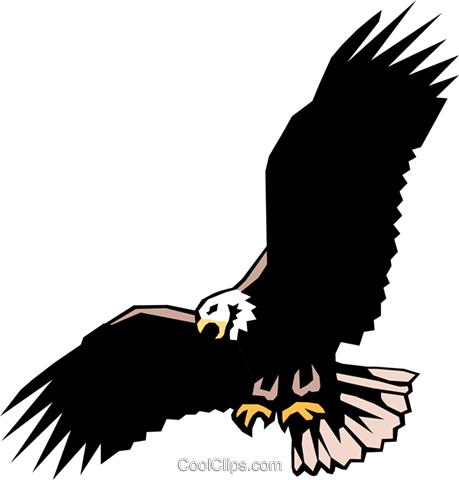 Eagle Royalty Free Vector Clip Art illustration anim0080