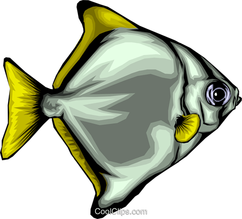 Tropical fish Royalty Free Vector Clip Art illustration anim0082