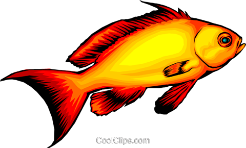 Tropical fish Royalty Free Vector Clip Art illustration anim0084