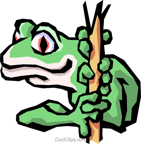 Tree frog Royalty Free Vector Clip Art illustration anim0842