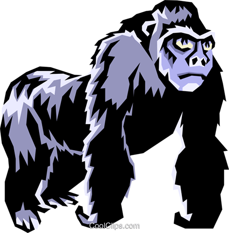 Gorillas Royalty Free Vector Clip Art illustration anim0853