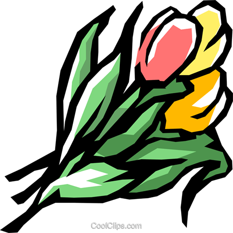 Tulips Royalty Free Vector Clip Art illustration natu0379