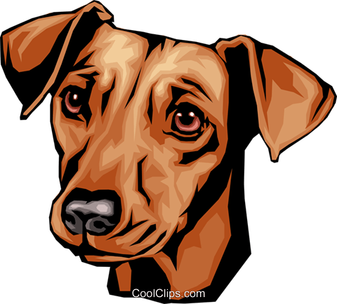 Dachshund Royalty Free Vector Clip Art illustration anim0091