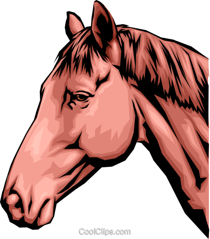 Horse head Royalty Free Vector Clip Art illustration anim0096