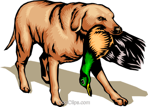 Hunting dog Royalty Free Vector Clip Art illustration anim0098