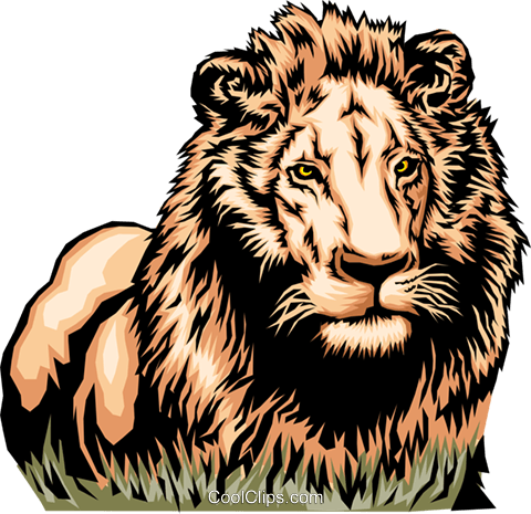 African lion Royalty Free Vector Clip Art illustration anim0103