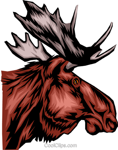Moose head Royalty Free Vector Clip Art illustration anim0105
