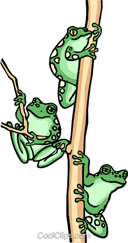 Frog design Royalty Free Vector Clip Art illustration anim0529