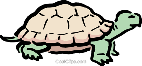 Cartoon turtle Royalty Free Vector Clip Art illustration anim0540