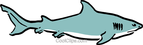 Cartoon shark Royalty Free Vector Clip Art illustration anim0546