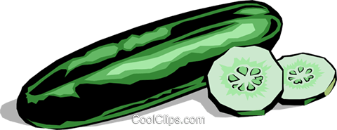 Cucumber and slices Royalty Free Vector Clip Art illustration food0128