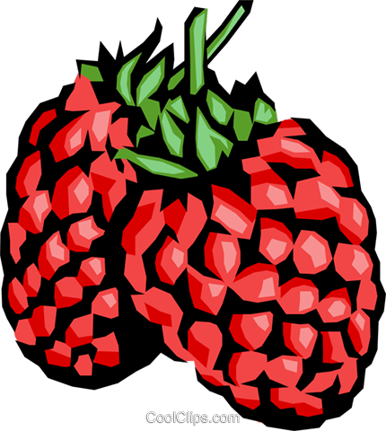 Raspberries Royalty Free Vector Clip Art illustration food0144
