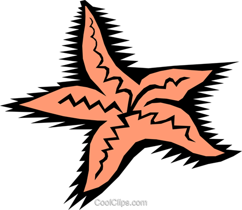 Starfish Royalty Free Vector Clip Art illustration anim0438