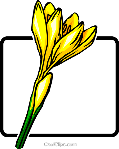 Crocus Royalty Free Vector Clip Art illustration natu0023