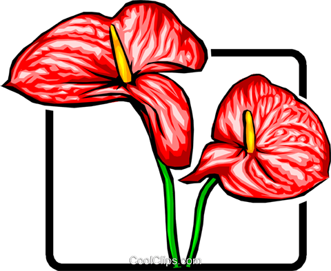 Red flower Royalty Free Vector Clip Art illustration natu0026