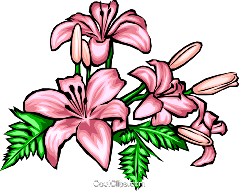 Flowers Royalty Free Vector Clip Art illustration natu0028