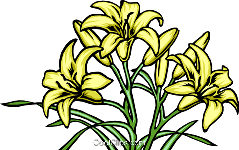 Lilies Royalty Free Vector Clip Art illustration natu0030