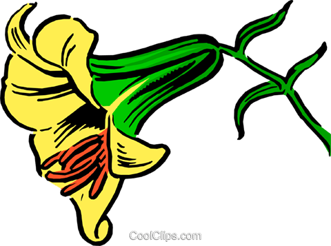Lily Royalty Free Vector Clip Art illustration natu0031