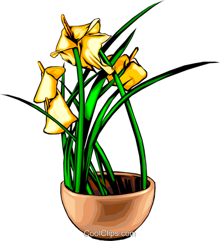 Flowers Royalty Free Vector Clip Art illustration natu0033