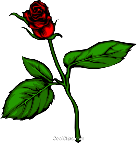 Red rose Royalty Free Vector Clip Art illustration natu0040