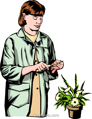 Woman florist Royalty Free Vector Clip Art illustration peop0222