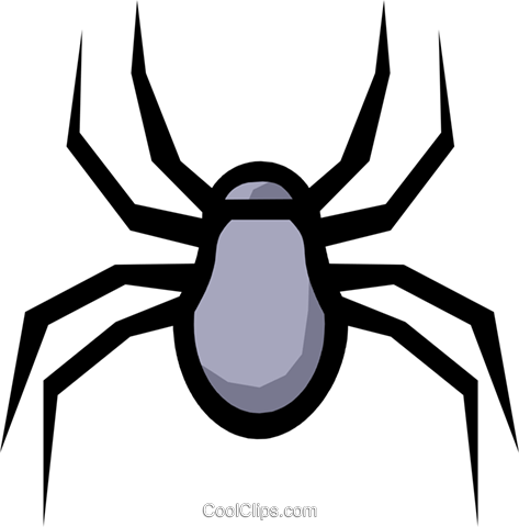 Spider Royalty Free Vector Clip Art illustration anim0560