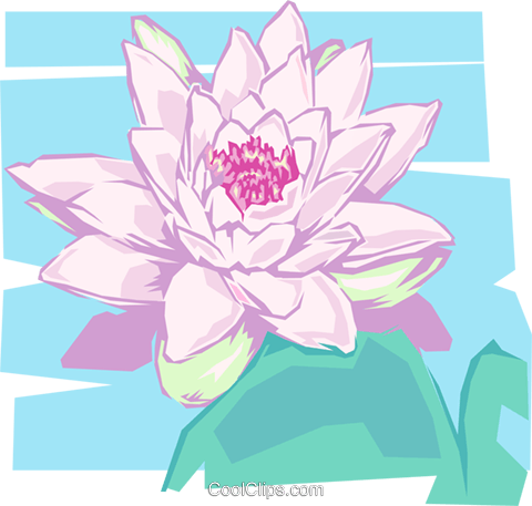 Water lily Royalty Free Vector Clip Art illustration natu0082