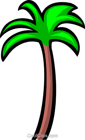 Palm tree Royalty Free Vector Clip Art illustration natu0199