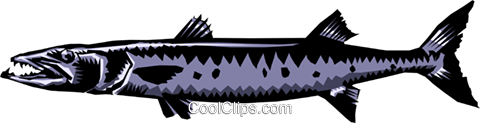 Barracuda Royalty Free Vector Clip Art illustration anim0187