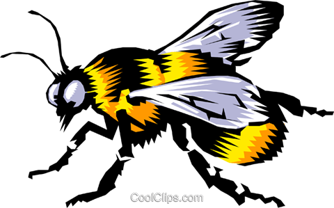 Bumblebee Royalty Free Vector Clip Art illustration anim0190