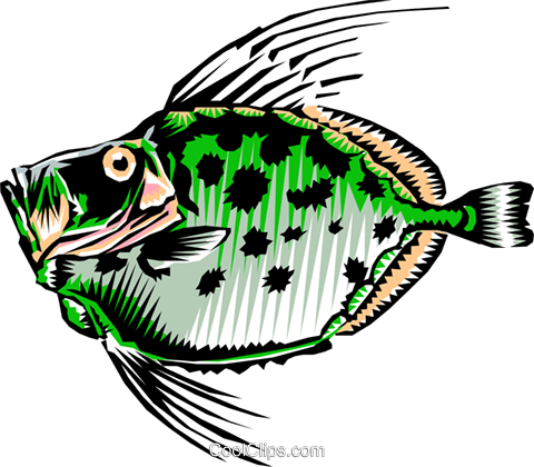 Buck dory Royalty Free Vector Clip Art illustration anim0193