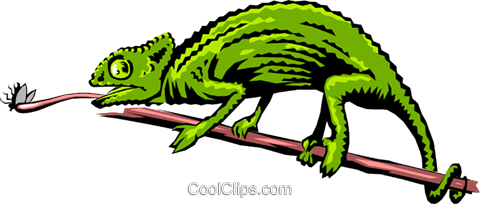 Chameleon Royalty Free Vector Clip Art illustration anim0199