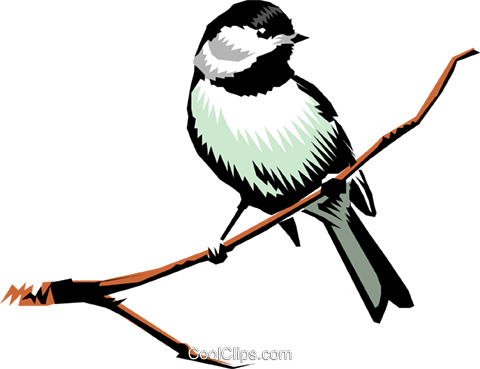 Chickadee Royalty Free Vector Clip Art illustration anim0202