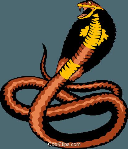 Cobra Royalty Free Vector Clip Art illustration -anim0204 ...