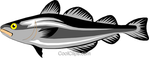 Cod fish Royalty Free Vector Clip Art illustration anim0205