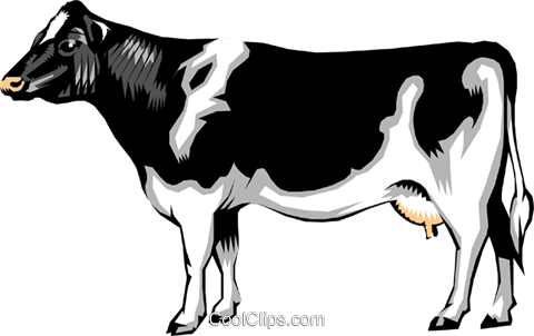 Dairy cow Royalty Free Vector Clip Art illustration anim0206