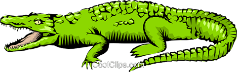 Crocodile Royalty Free Vector Clip Art illustration anim0209
