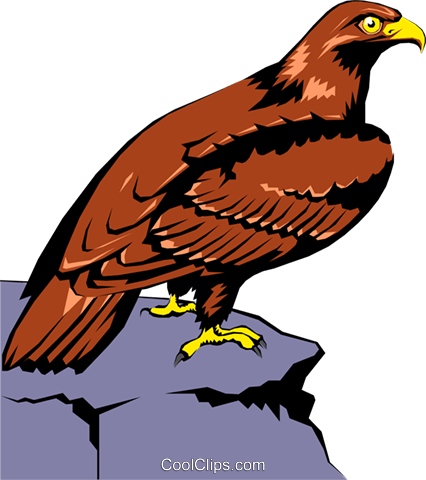 Eagle Royalty Free Vector Clip Art illustration anim0214