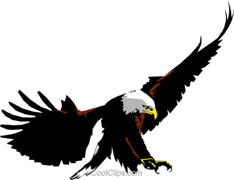 Eagle Royalty Free Vector Clip Art illustration anim0216