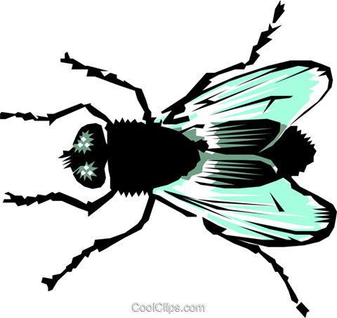 House fly Royalty Free Vector Clip Art illustration anim0218