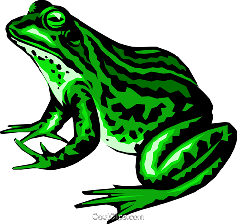 Frog Royalty Free Vector Clip Art illustration anim0220