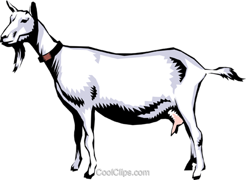 Goats Royalty Free Vector Clip Art illustration anim0221