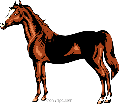 Horse Royalty Free Vector Clip Art illustration anim0223