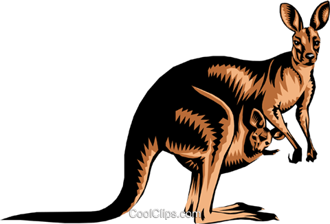 Kangaroo Royalty Free Vector Clip Art illustration anim0226