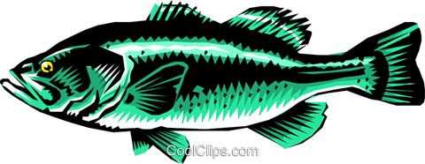 Largemouth bass Royalty Free Vector Clip Art illustration anim0230
